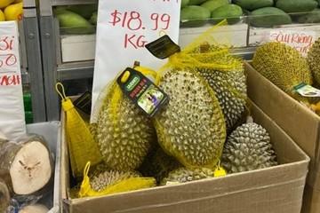 Sầu riêng Ri6 của Việt Nam 'phủ sóng' thị trường Australia