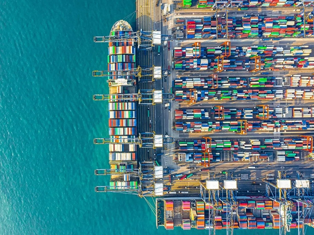 Nhiều hãng tàu rời đang chuyển sang chở container vì lợi nhuận cao. Ảnh: Bloomberg