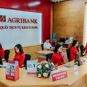 Agribank đấu giá nợ của công ty con Đầu tư Sao Thái Dương