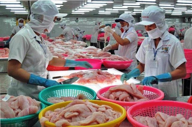Mỹ hủy rà soát chống bán phá giá đối với 28 doanh nghiệp cá tra Việt Nam