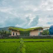 Vườn hoa trên mái nhà, phòng thờ hình quả trứng khổng lồ