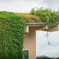 <p> Theo nguyên tắc, bất kỳ công trình kiến trúc nào trên vùng đất nông nghiệp này đều không được có mái bê tông. Vì vậy kiến trúc sư đã quyết định tạo ra một mái nhà bằng nhôm màu xanh lá cây, vật liệu này sẽ chống lại sự xâm nhập của rễ cây và độ ẩm.</p>