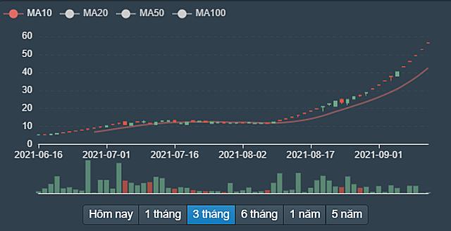 Biến động cổ phiếu TGG từ tháng 6/2021 đến nay