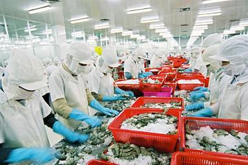 Xuất xứ hàng hoá - rào cản lớn đối với thuỷ sản xuất vào EU theo EVFTA