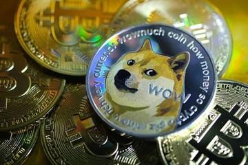 Triệu phú Dogecoin mất 500.000 USD khi thị trường lao dốc