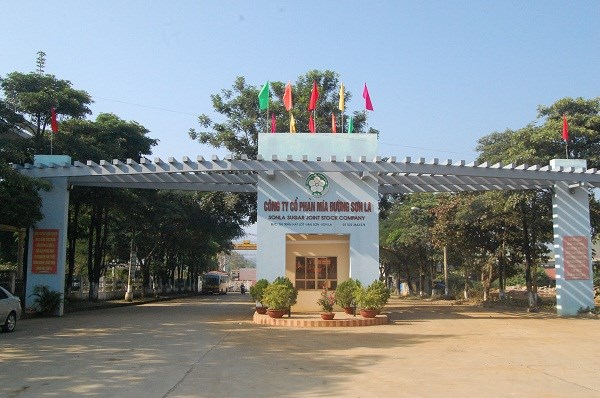 Mía đường Sơn La