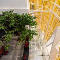 <p> Nhà dành nhiều diện tích cho các không gian chung, nơi gặp gỡ, trao đổi, nói chuyện. Tất cả không gian này đều dễ dàng tương tác với tự nhiên.</p>