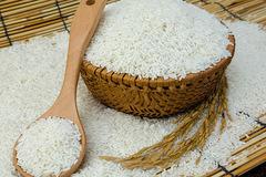 Gạo Thái Lan xuống thấp nhất 1,5 năm liệu có làm khó xuất khẩu gạo Việt Nam?
