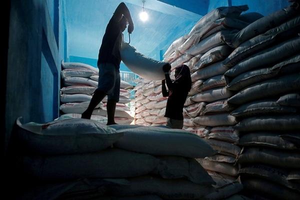 Bang sản xuất đường lớn nhất Ấn Độ tăng giá mua lần đầu trong 4 năm