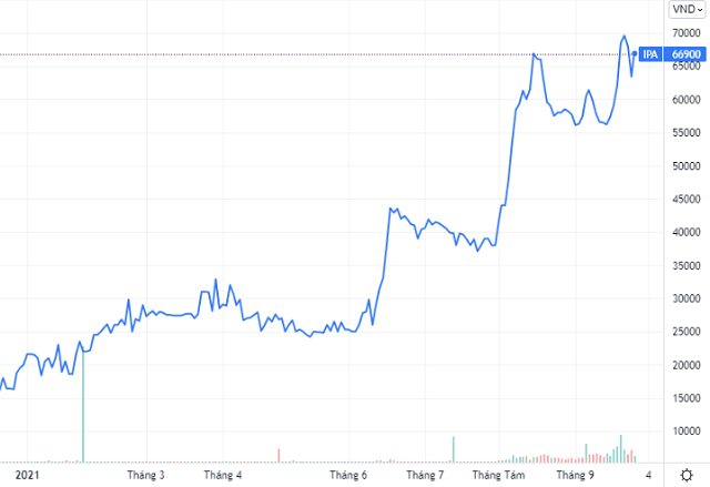 Trên thị trường, cổ phiếu IPA giao dịch quanh vùng đỉnh 67.000 đồng/cp, gấp hơn 3 lần đầu năm. Ảnh: Tradingview