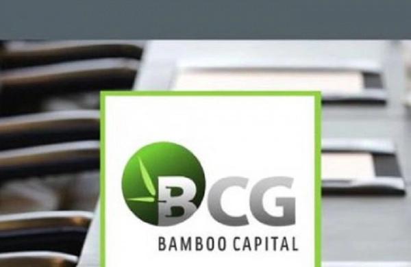 Vừa lập công ty tài chính, Bamboo Capital muốn mua 71% vốn một doanh nghiệp bảo hiểm