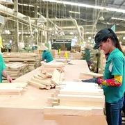 Cân nhắc nhập khẩu gỗ bằng tàu rời để đảm bảo nguồn nguyên liệu