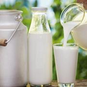 Ngành sữa tăng trưởng nhờ thị trường nông thôn