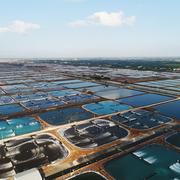 Tập đoàn PAN đăng ký bán 5,4 triệu cổ phiếu Thực phẩm Sao Ta (FMC)