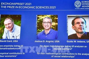 Giải thưởng Nobel Kinh tế 2021 được vinh danh về nội dung gì?