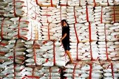 Việt Nam là nước nhập khẩu đường lớn nhất của Lào