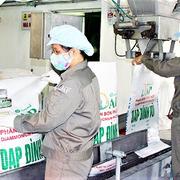Lợi nhuận 9 tháng các doanh nghiệp phân bón và săm lốp thuộc Vinachem tăng mạnh