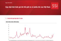 SSI Research: Cập nhật tình hình giá khí thế giới và cổ phiếu khí của Việt Nam