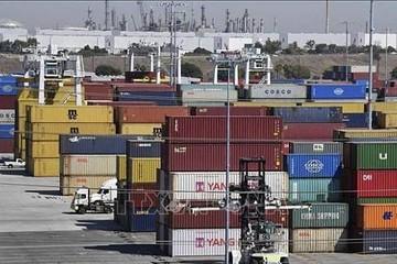 Mỹ: Giá cước vận tải và thuê kho bãi cao kỷ lục