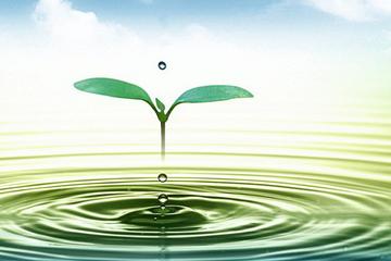 Một doanh nghiệp kinh doanh nước sạch chốt quyền chia cổ tức cổ phiếu tỷ lệ 100%
