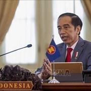 Indonesia muốn thu lợi từ sự bùng nổ giá khoáng sản và than đá