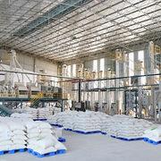 Giá chào bán gạo xuất khẩu của Việt Nam tiếp tục tăng mạnh