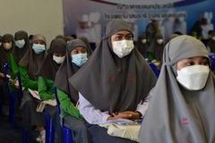 WHO: Ca nhiễm, tử vong do Covid-19 giảm toàn cầu