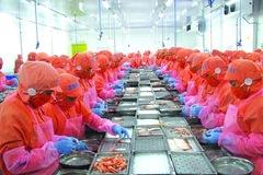 Cục Xuất nhập khẩu: Xuất khẩu tôm sẽ dần phục hồi từ tháng 10