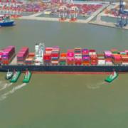 Giá cước vận tải biển của Việt Nam thấp nhất trong khu vực trên cùng tuyến