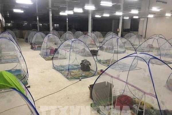 Đồng bằng sông Cửu Long 'mất' 1.800 doanh nghiệp do dịch Covid-19