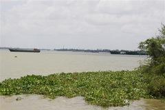 Đề xuất hủy kết quả công ty trúng đấu giá mỏ cát hơn 2.800 tỷ đồng ở An Giang
