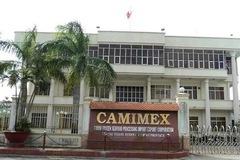 Lãi quý III tăng 67%, Camimex Group hoàn thành 81% kế hoạch năm