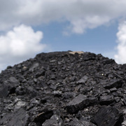 Giá than giảm hơn 30% sau tuyên bố can thiệp thị trường của Trung Quốc