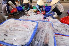 Xuất khẩu hải sản sẽ tiếp đà giảm trong tháng 10