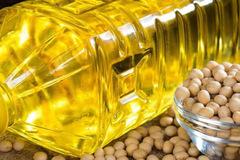 Giá dầu thực vật thế giới tăng mạnh, dầu đậu tương Trung Quốc cao kỷ lục 10 năm
