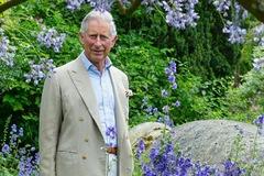 Bên trong bất động sản nơi Thái tử Charles tự trồng cây, mở cửa hàng bán đồ hoàng gia